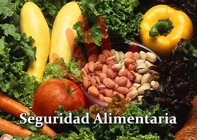 seguridad-alimentaria-y-nutricional