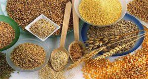 cereales para su organismo