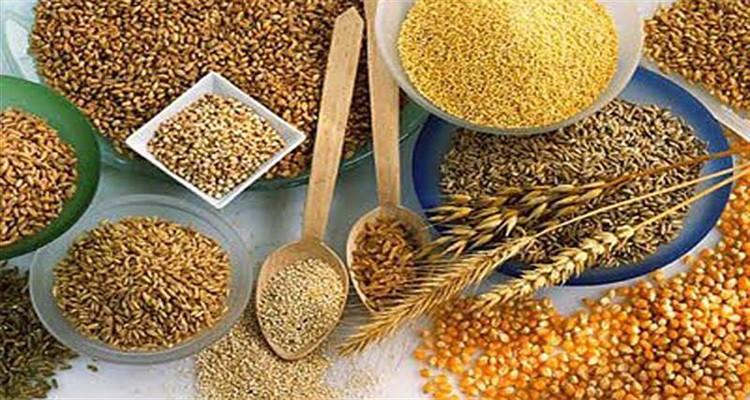 Mejores Opciones de Combinaciones de Cereales para su
