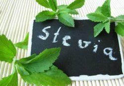 Los contras de la Stevia